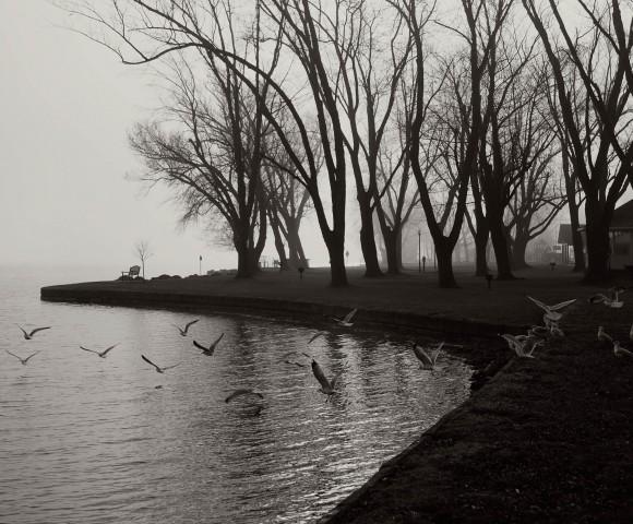Lake Chautauqua, Mayville, NY