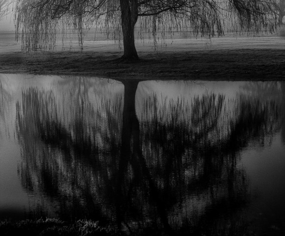 Water-Reflection
